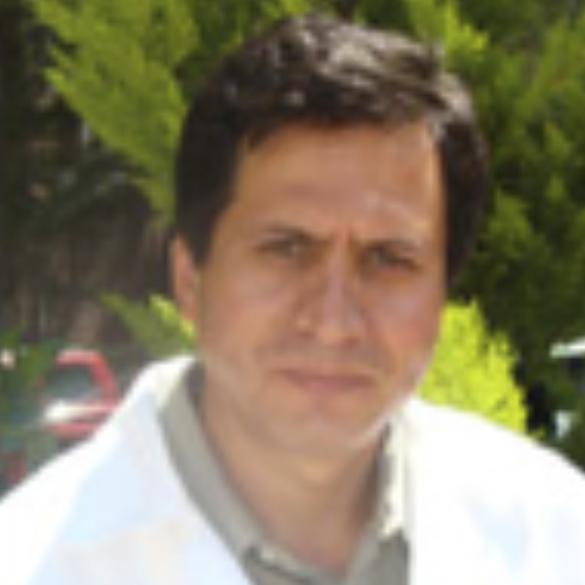 Osvaldo Flores Castrellón